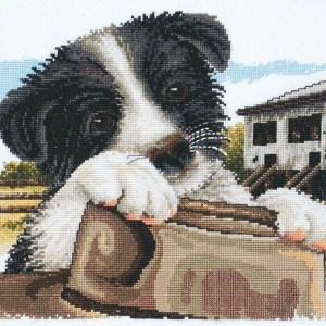 cCountry Threads Cross Stitch Ready for Work Aussie Dog Pattern New X Stitch FJP-1049 (CT)
