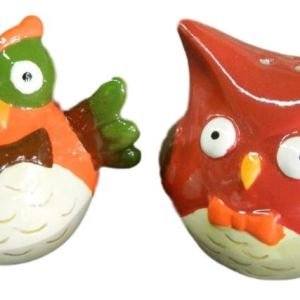 Collectable Novelty Salt and Pepper Shakers Set FUNKY OWLS Kitchen FREEPOST NEW