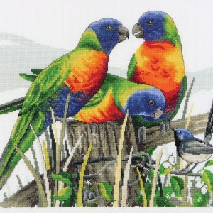 Country Threads Cross Stitch Kit Lots of Lorikeets Australian Parrots Birds New FJ-1072