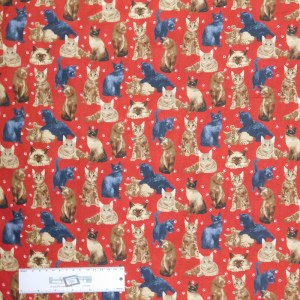 Patchwork Quilting Sewing Fabric MY PET FAMILY CATS 50x55cm FQ New