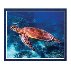 Patchwork Quilting Sewing Fabric GREAT BARRIER REEF TURTLE 2 Panel 90x110cm New