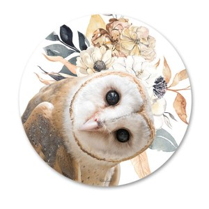Kitchen Cork Backed Placemats AND Coasters ROUND BARN OWL Set 6 New