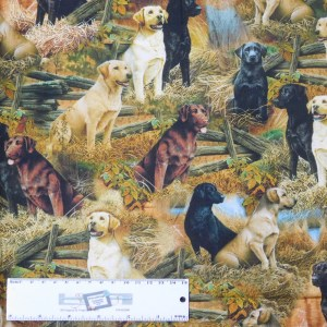 Quilting Patchwork Sewing Fabric LOVEABLE LABS DOGS 50x55cm FQ New