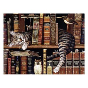 5D Diamond Painting Full Image Square Drills CAT LIBRARY 30x440cm New