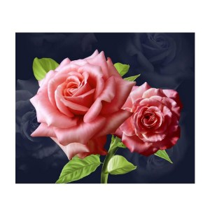 5D Diamond Painting Full Image Square Drills PINK ROSES 30x45cm