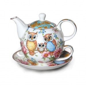 Elegant Kitchen China Teapot and Cup OWLS Tea For One Set