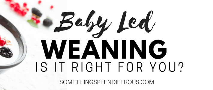 Baby Led Weaning www.Somethingsplendiferous.com There are so many reasons I love Baby Led Weaning. With my first child, I did a mix of pureed food and moved into what I now know as baby led weaning. I just wish I would have started sooner!