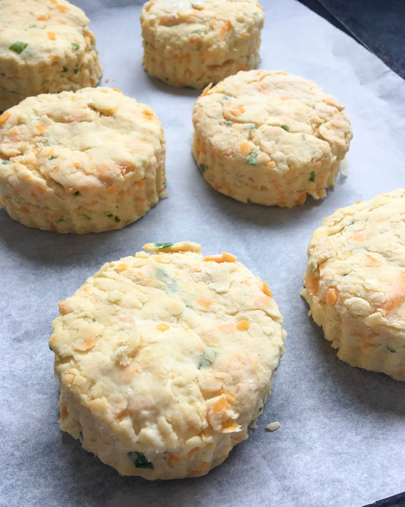 A tray of unbaked cheese scones, cut out and ready for the oven.