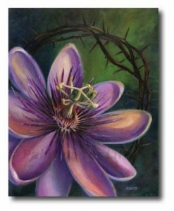 The_Passion_Flower