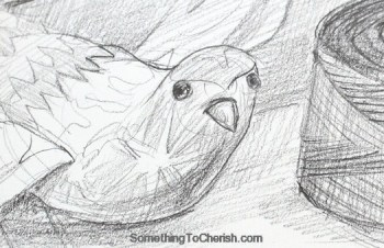 bird-sketch-head-gesture