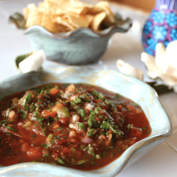 Fresh Garden Salsa Recipe by Benjamin Hummel for Something to Cherish