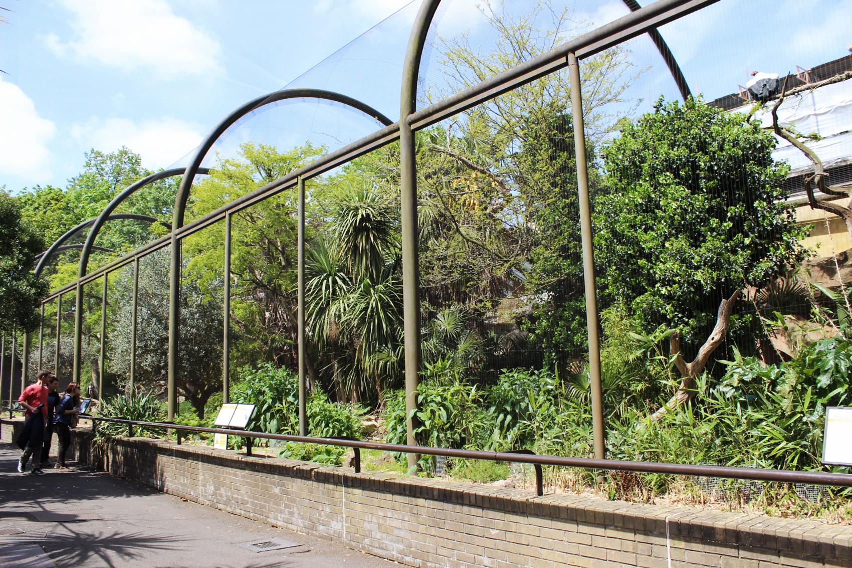 zoo-londres-zsl