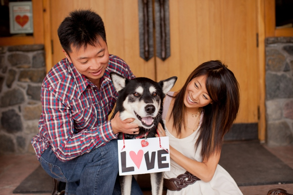 ST_KB_Digital_Designs_dog_engagement_0002.jpg