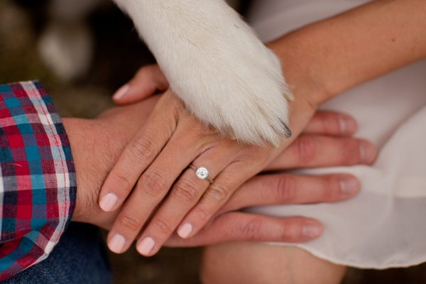 ST_KB_Digital_Designs_dog_engagement_0013.jpg