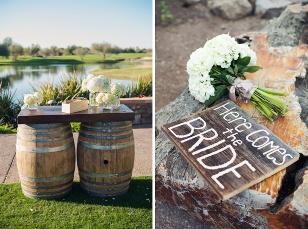 ST_Ryan_Nicole_Photography_diy_wedding_0003.jpg