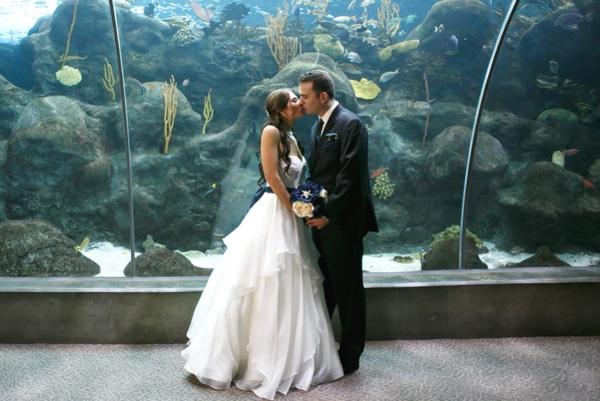 SomethingTurquoise_DIY_aquarium_wedding_Carrie_Wildes_Photography_0001.jpg