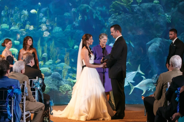 SomethingTurquoise_DIY_aquarium_wedding_Carrie_Wildes_Photography_0017.jpg