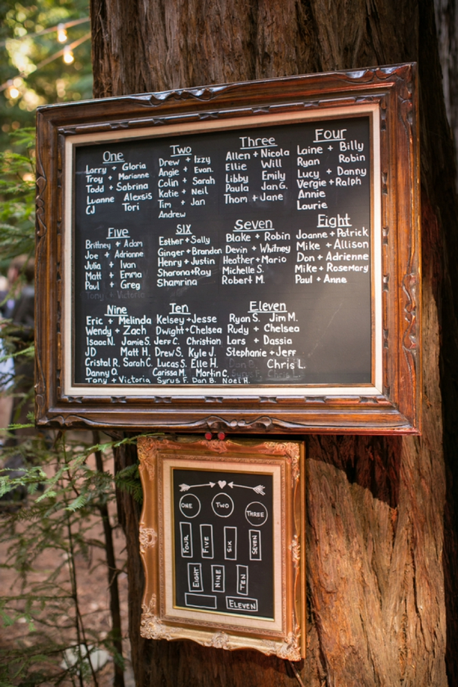 Awesome chalkboard seating chart hung on a tree!