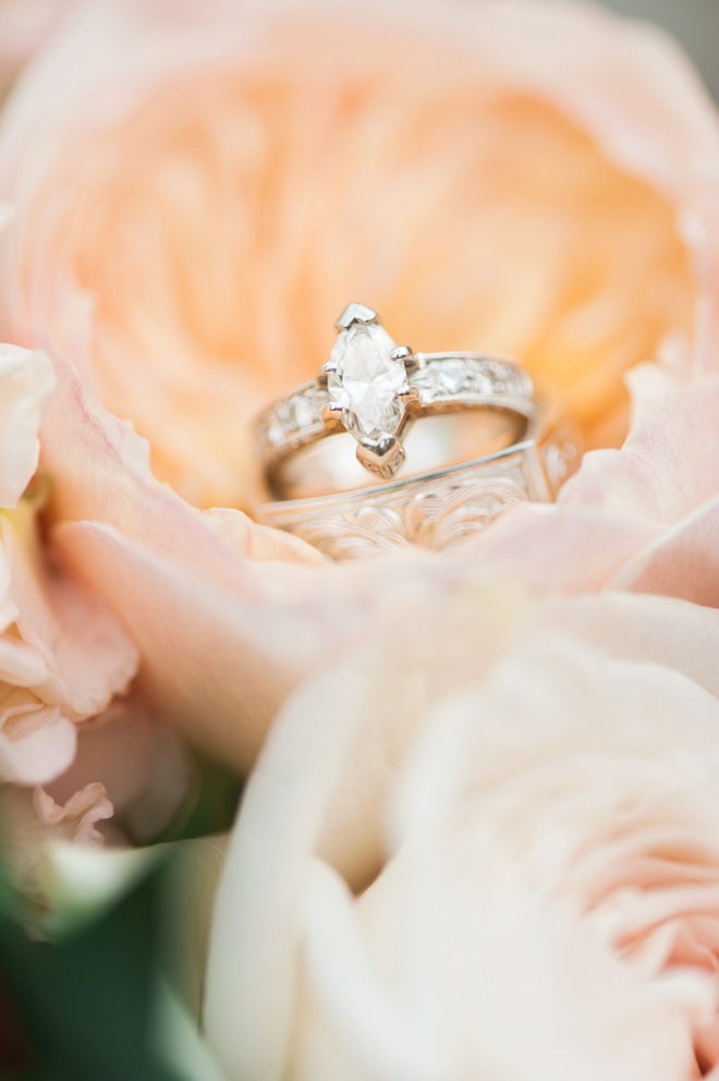 Custom wedding rings shot in a cabbage rose.