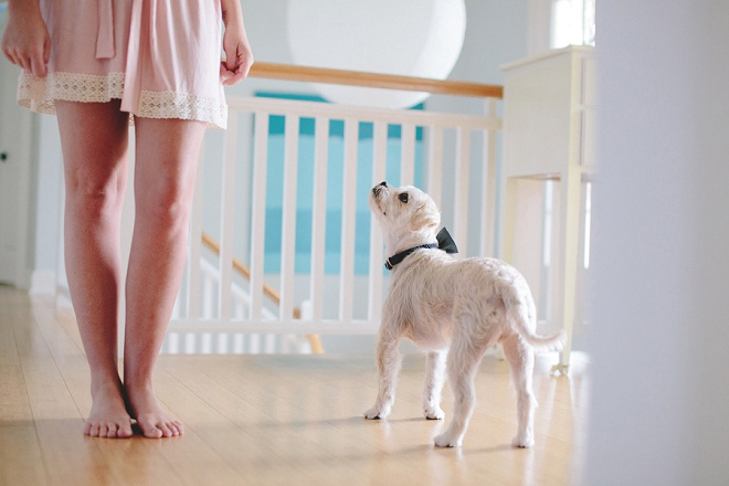How darling is this shot of a bride and her pup?! LOVE!