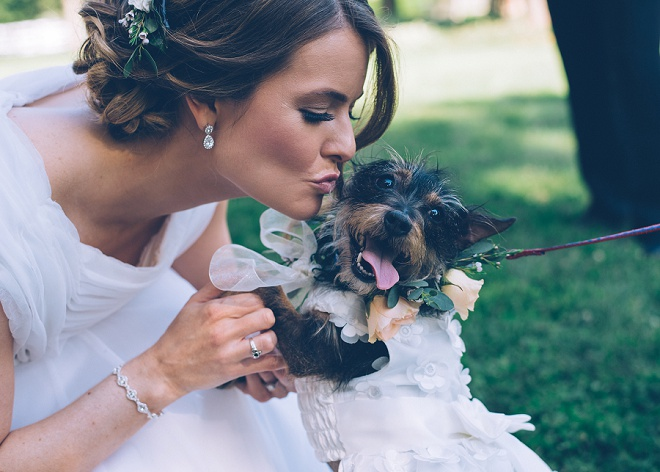 How cute is this darling photo of the Bride and her Flower Girl pup?! Love it!