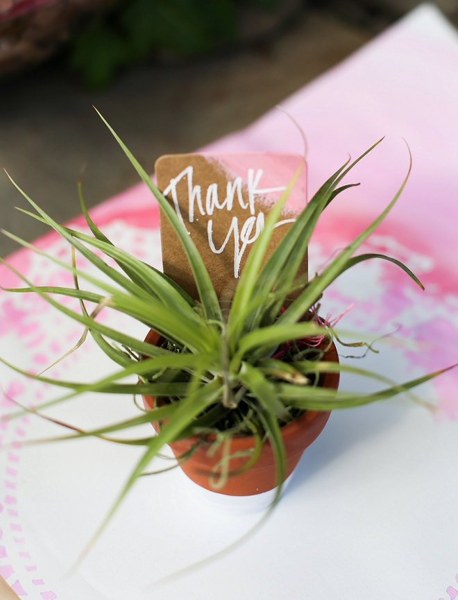 We love these thank you air plants at this fun bridal shower!