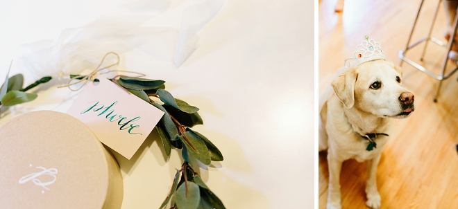 How gorgeous are these flower crowns the Bride and Bridesmaids crafted? LOVE!