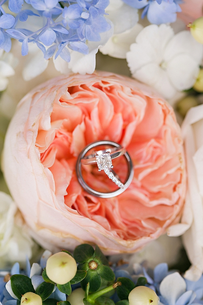 Check out this stunning garden rose ring shot! LOVE!