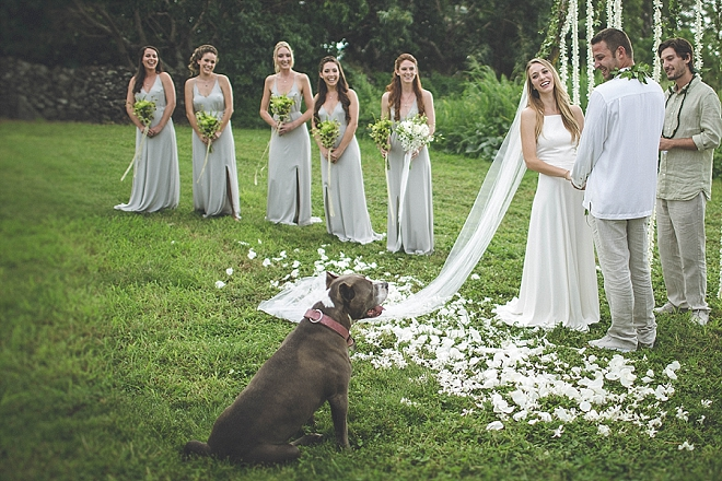 We're swooning over this stunning outdoor ceremony in Maui with pup!