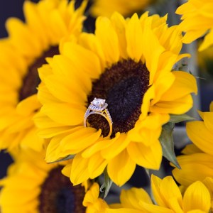 Gorgeous shot of a wedding ring in stunning sunflowers!