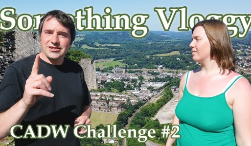 Chepstow Port Wall, What Is It and Why Is It Here? – CADW Challenge #2