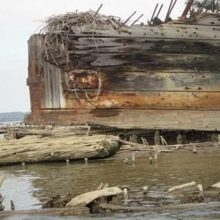 Mallows Bay abandoned boat