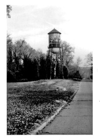 Forest Haven Water Tower