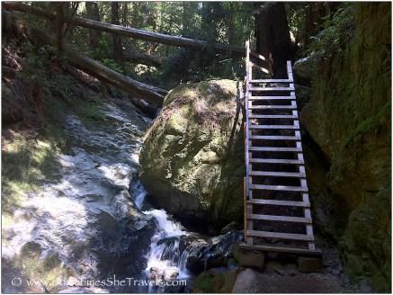 Ladder on rock