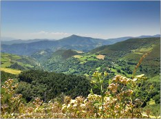 Green mountains, hills, and valleys