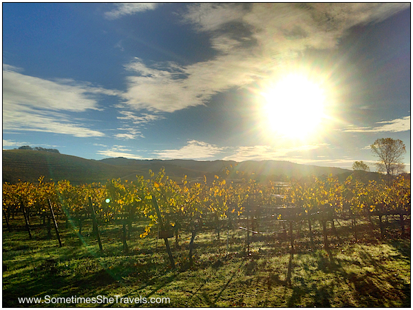 Of course we stopped on the way to the trailhead to take pictures of the morning sun and the vineyards.