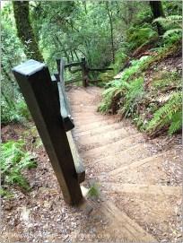 Down Cataract Trail