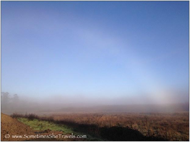 A white rainbow!!!