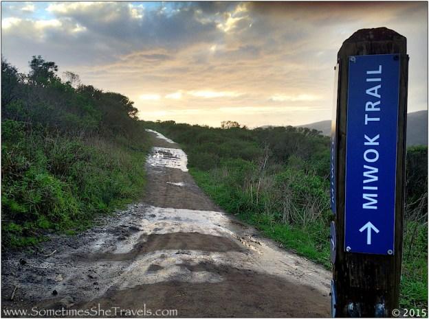 Miwok Trail headed west on Diaz Ridge