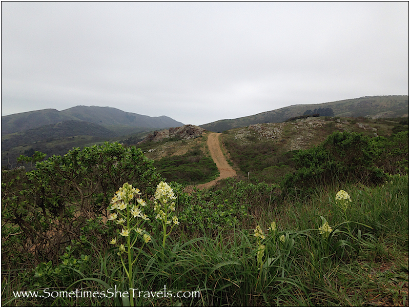 Beautiful trail to Hawk Camp