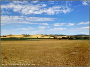 Camino de Santiago: Before Logroño