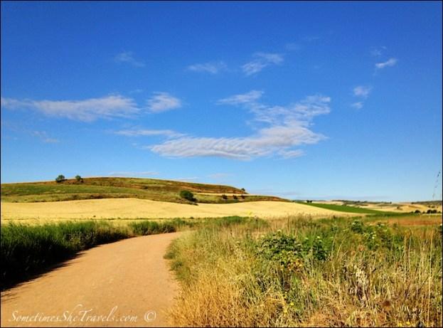 camino de santiago road through fields 2
