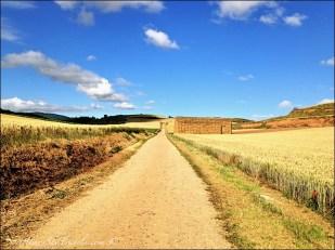camino de santiago straight road