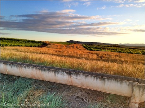 camino des santiago aqueduct in field