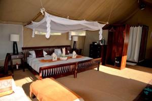 Linyanti Bush Camp Botswana