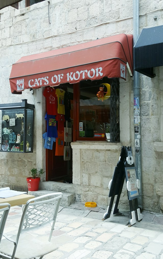 One day in Kotor
