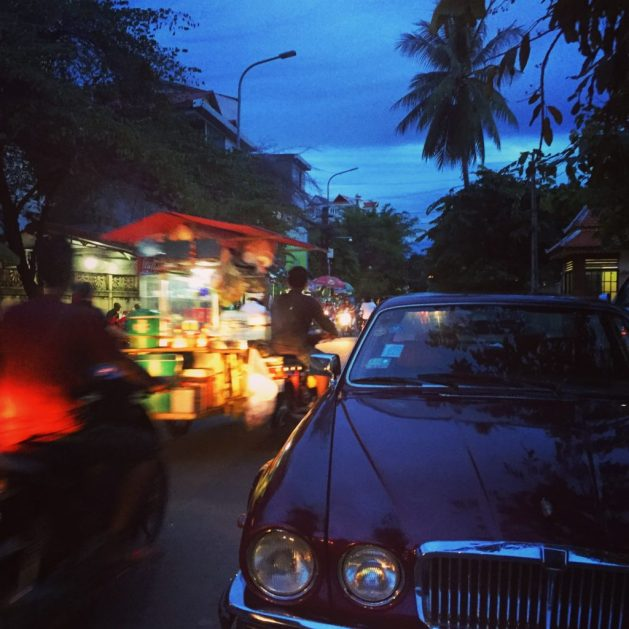 Jaguar in Cambodia