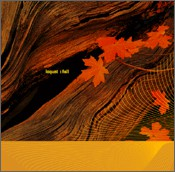 Loquat Fall