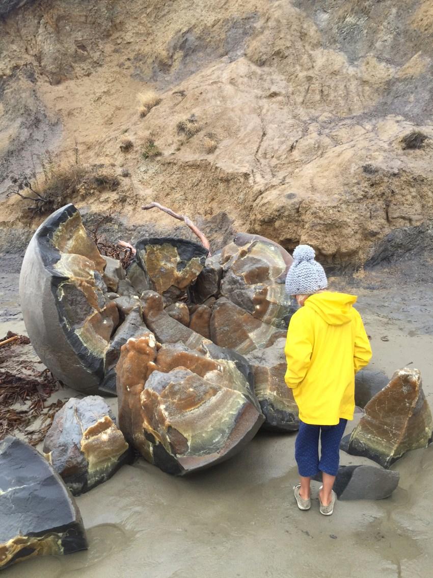 Ivy at Moeraki boulders