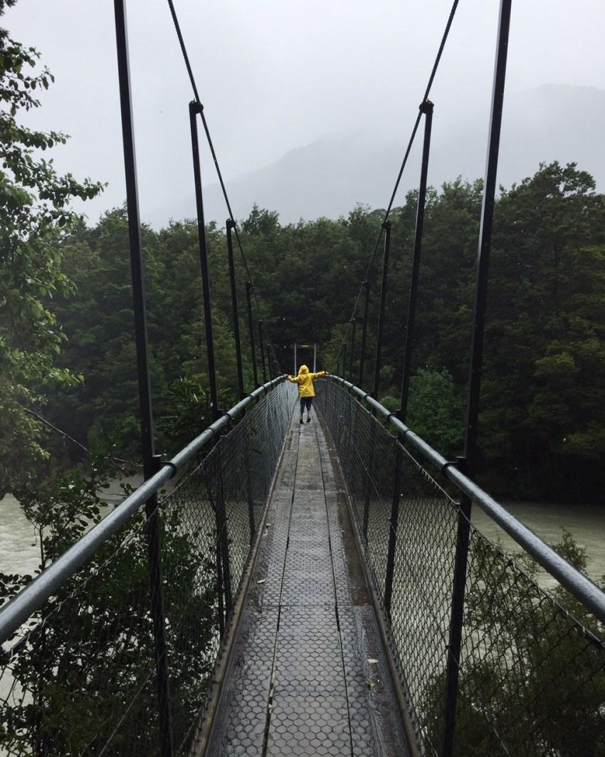 Ivy on bridge in Haast pass
